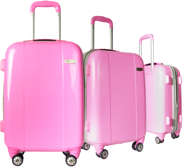 Classic Case N°3 Pink